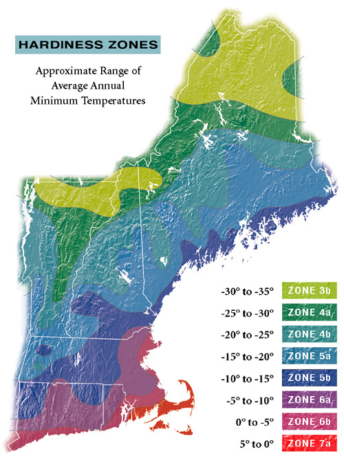 Resources For Growers Gardeners MMGGA - Map of planting zones in the us